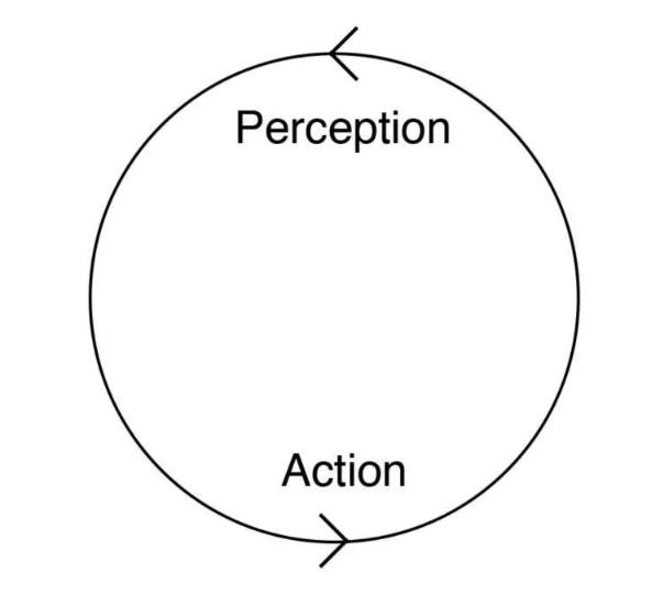 行为和反馈是智能形成的基石。
